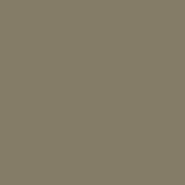RAL 7002 Olivgrau